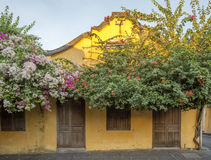 Old house, Hoi An, Vietnam Stock Photography
