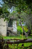 Old stone house with a tiled roof around the house growing dense green grass horizontal photo. An old house, a house of mud. East Serbia Stock Photo