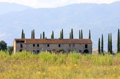 Old house between Italian cypress trees, Tuscany Stock Photography