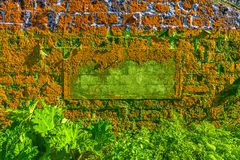 Old house overgrown orange lichen, Sao Miguel Island, Azores. Archipelago, Portugal royalty free stock photos