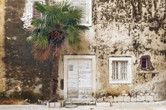 Old house and palm tree. Mediterranean royalty free stock photography