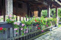 Old house patio with flowers on wooden fence.  Royalty Free Stock Photography