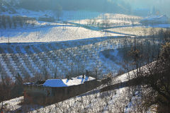 Old house and plantations in snowy Piedmont. Stock Photos