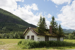 Old House With Spruces Stock Photography