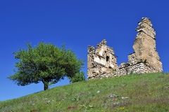 Old house and tree. From Macedonia royalty free stock photography