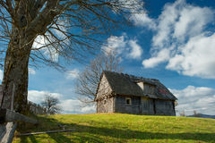 Old house and tree. Old house and the meadow big tree stock photography