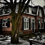 Old house. An old house with a tree in the Netherlands royalty free stock image