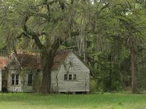 Old house under oak trees Stock Photos
