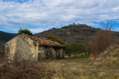 Old House in Vineyard Royalty Free Stock Photo
