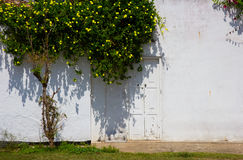 Old house white wall with door Royalty Free Stock Images