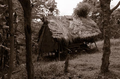 Old house in wilderness Bali Royalty Free Stock Photos