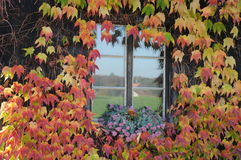 Old House Window in Fall Royalty Free Stock Image