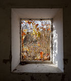 Old house window Royalty Free Stock Image