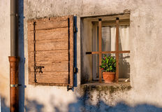 Old house window with open shutters and flower. Italian Village. Stock Image
