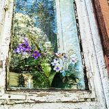 Old House Window. Window of old house in rustical style with beautiful flowers. Sky and tree reflect in the glass Royalty Free Stock Image