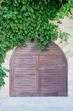 Wooden door and green plants Royalty Free Stock Photo