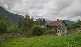 Old houses in ecomuseum in Norway. Folk heritage of Norway in summer  ecomuseum travel Royalty Free Stock Photos