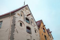 Old houses in old town of Tallinn. Three old houses in town of Tallinn, Estonia royalty free stock photo