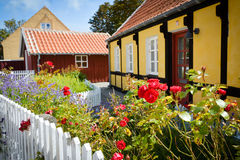 Old houses in Skagen, Denmark. Classic old yellow houses with a red wooden shed and orange tiled roofs, white wood fence and blooming flowers in the front yard Royalty Free Stock Photo