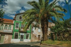 Old houses with worn facade and palm tree. Old houses with worn facade and garden with palm tree on empty alley, in a sunny day at Belmonte. A cute small town stock photography