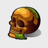 Old human skull, vector image for your needs Royalty Free Stock Images