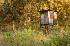 Old hunter's stand. In the forest Royalty Free Stock Photo