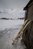 Old hunting skis with fur on snow background Royalty Free Stock Photo