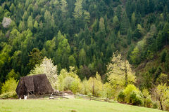 Old hut. Abandoned hut high up in the middle of nowhere Stock Photography