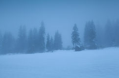 Old hut in foggy alpine forest Royalty Free Stock Image