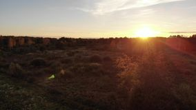 Old hut in the meadow, nature, wonderful sunset and lens flare effect. Aerial views with smooth flight forward stock video