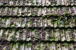 Old Hut roof tiles Royalty Free Stock Photos