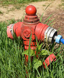 Old hydrant in the park Royalty Free Stock Photos