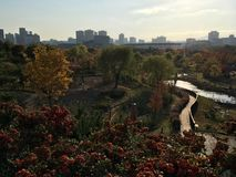 Daejeon behind the botanical garden in autumn stock image