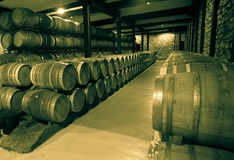 Old image of  wine cellar Stock Photography