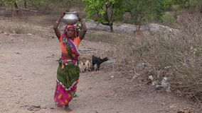 Old Indian woman carry baskets of water on her head, drought, India stock video footage