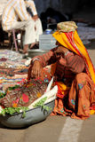 Old Indian woman selling vegetables in the street Royalty Free Stock Photos