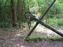 An old iron anchor in a tropical forest. A large rusting iron anchor, probably from the 1800s lies in a Florida forest stock photo