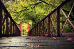 Forest. Old iron bridge Stock Images