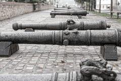 Old iron cannon  Budapest, Hungary Stock Photos
