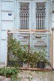 Flowers in frontof green door royalty free stock photos