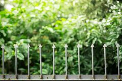 Old iron fence on natural background with sunlight. Old iron fence on natural blurred background with sunlight stock photography
