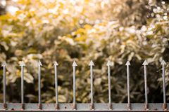 Old iron fence on natural background with sunlight. Old iron fence on natural blurred background with sunlight royalty free stock images