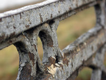 Old iron fence with peeling paint of bridge in Tver Royalty Free Stock Photo