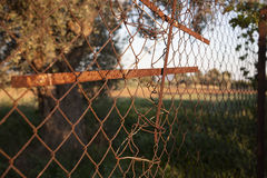 Old iron fence Royalty Free Stock Image