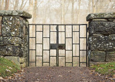 Old iron gate in old stone wall in front of misty forest. Stock Image