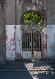 Old iron gate Stock Image