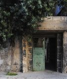 Old door and the olive tree royalty free stock photos
