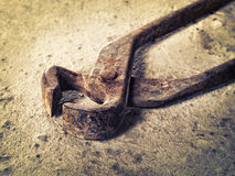 Old iron pincers on concrete closeup Royalty Free Stock Photos