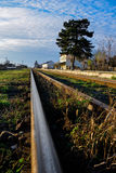 Old iron rails with green grass Stock Images
