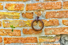 Old iron ring in a brick wall Royalty Free Stock Photography